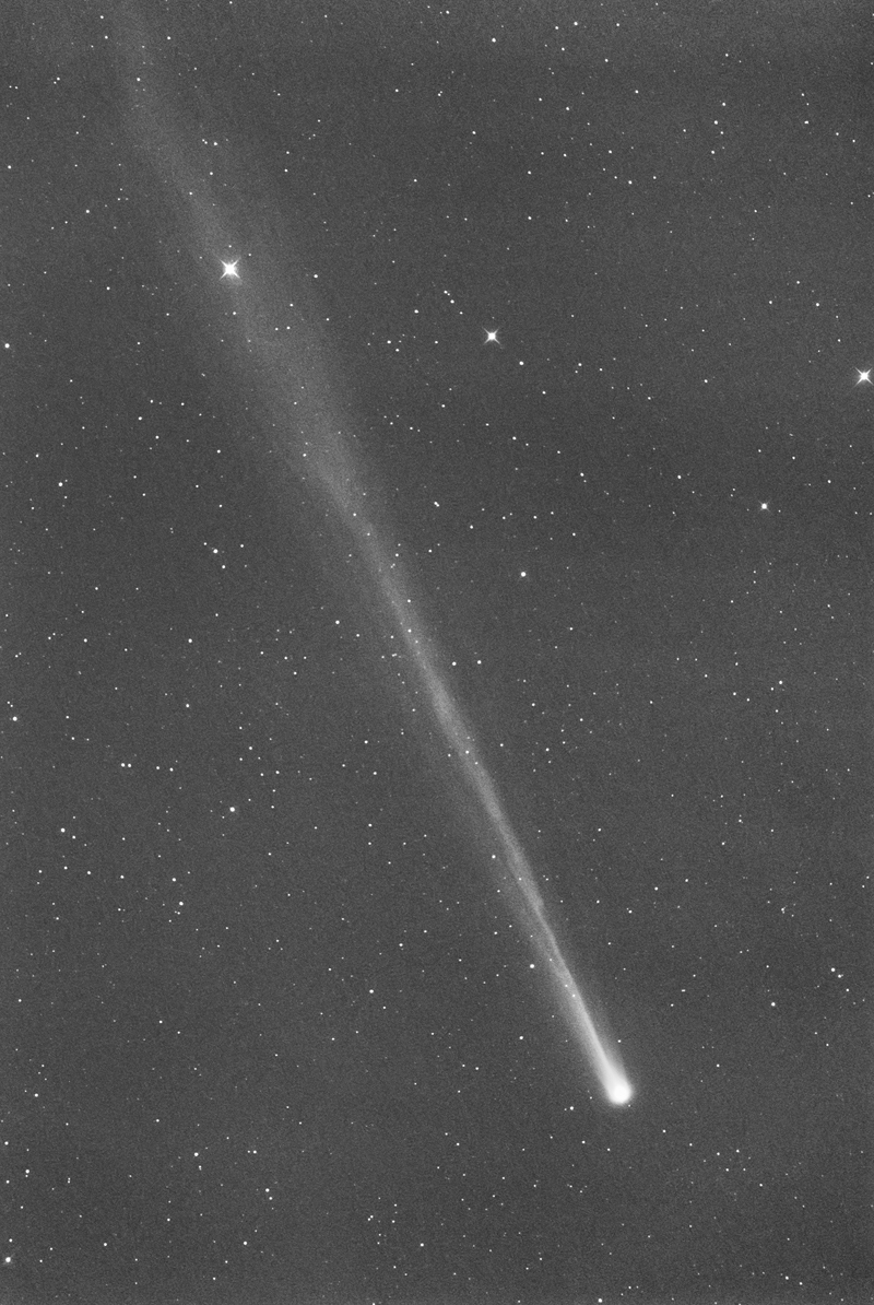 comet ison prophecy - HD 800×1194